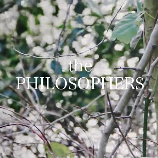 foto-piante-5